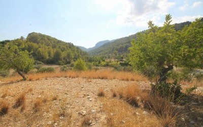 Land for Sale in Capdella, Balearic Islands, Spain