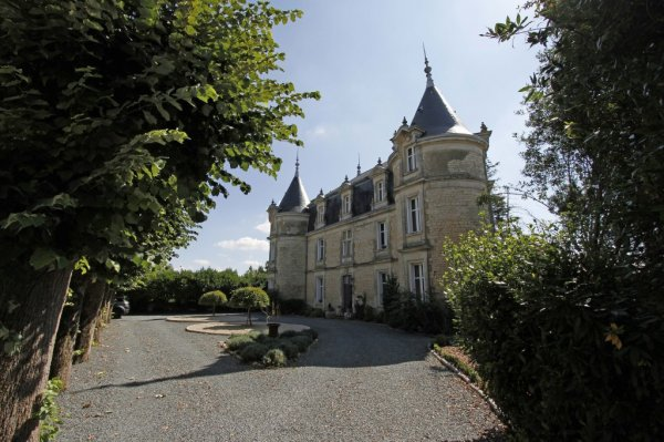 Castle for Sale in Fors, Poitou-Charentes, France
