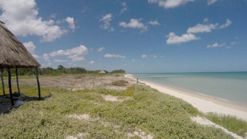 Land for Sale in Campeche, Mexico