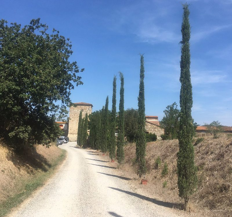 House of Character for Sale in Grosseto, Tuscany