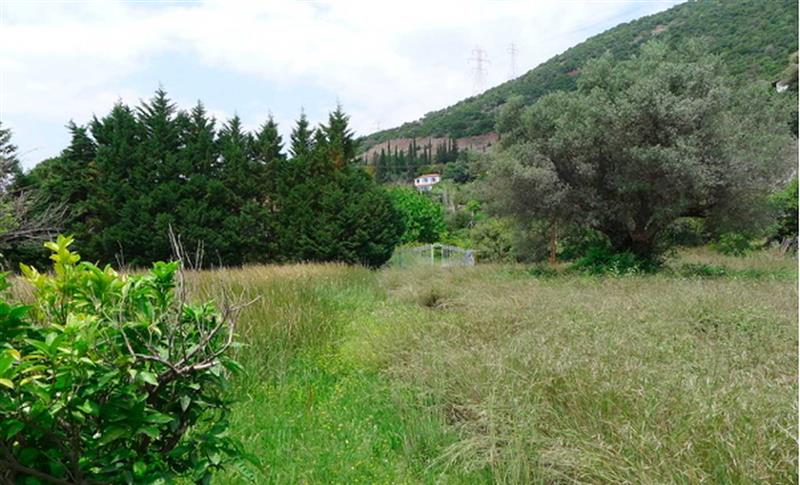 Property for Sale in Aitolokarnania