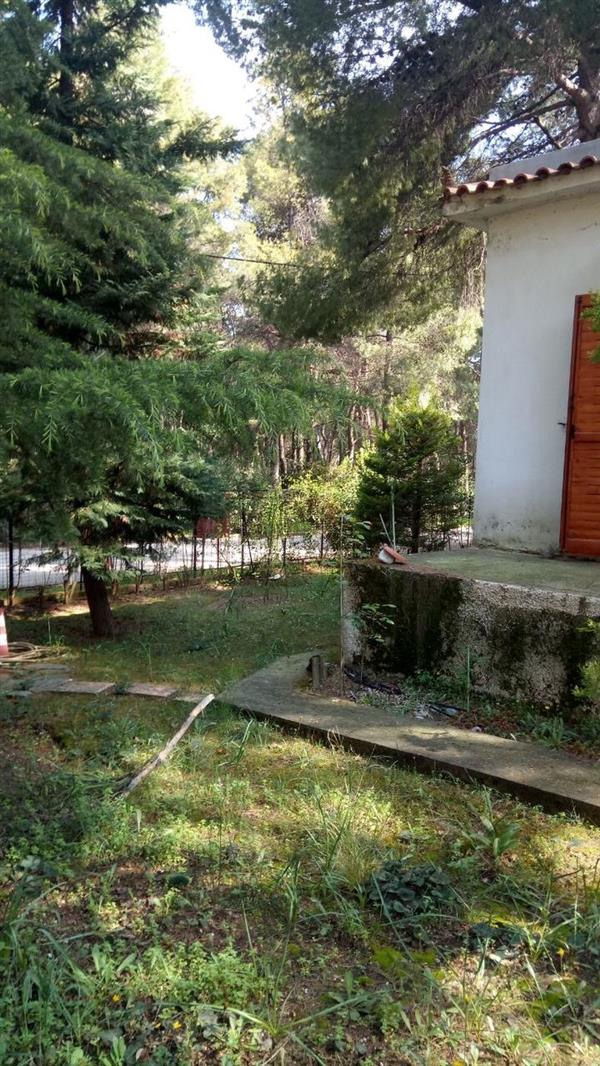 House for Sale in Drosia
