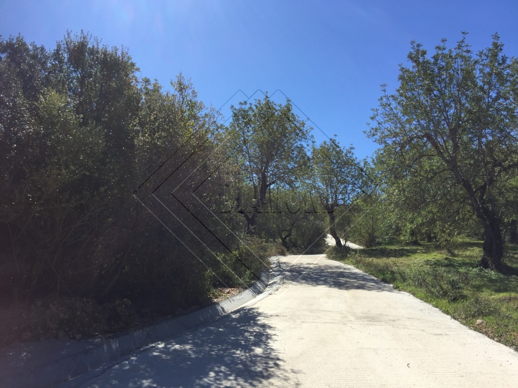 Land for Sale in Faro