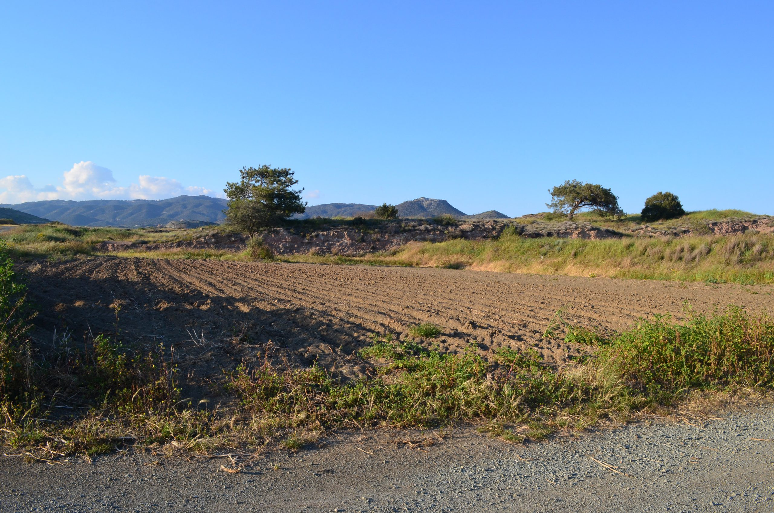 Land for Sale in Moni, Cyprus