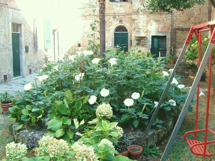 Apartment for Sale in Cortona, Italy