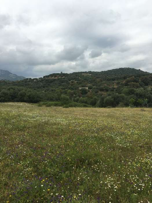 Land for Sale in Bari Sardo, Italy