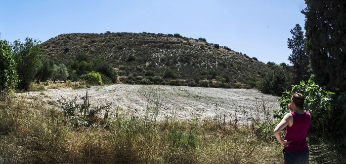 Land for Sale in Tochni, Cyprus