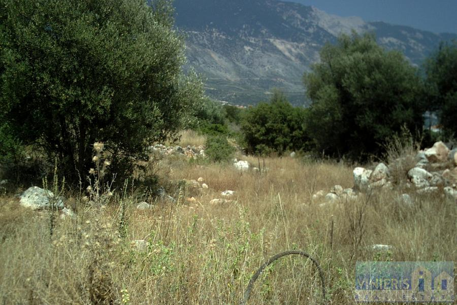 Land for Sale in Kefalonia, Greece