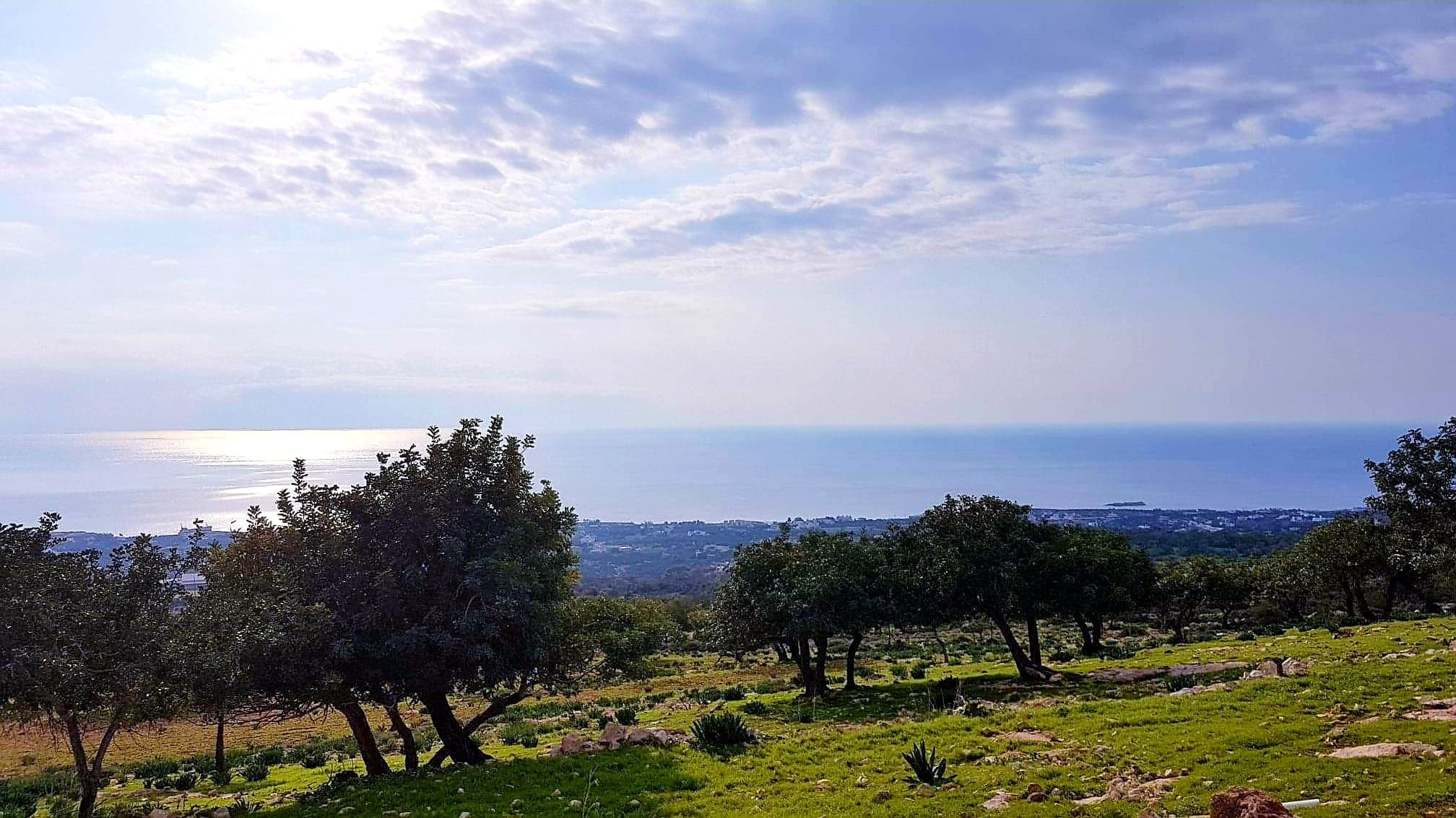 Land for Sale in Peyia, Cyprus