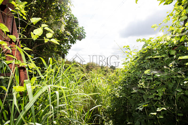 BuIldIng plot of LAND wIth small vIlla, close to Ruse