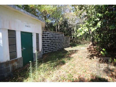 Land for Sale in Livramento, , Portugal